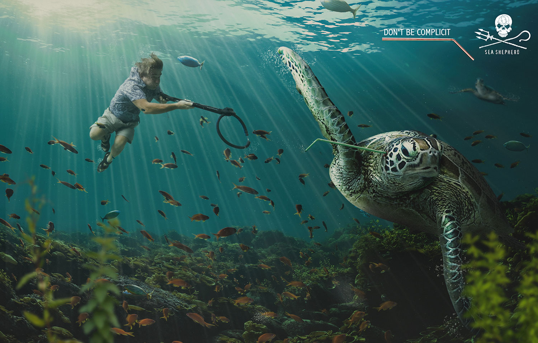 34614629_ENVI_SS_Turtle_1500