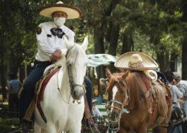 """Las próximas semanas serán claves para saber cómo será la """"Nueva Normalidad"""" en México"""