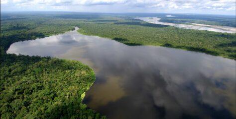 Natura celebra el Día de la Amazonia en sus redes sociales